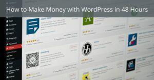 How to make money with WordPress in 48 hours - Screenshot of WordPress plugins